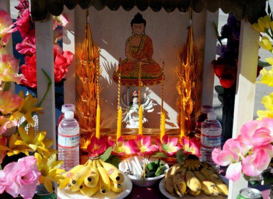 CambodianProject35198A52e9cdf8a5564.jpg