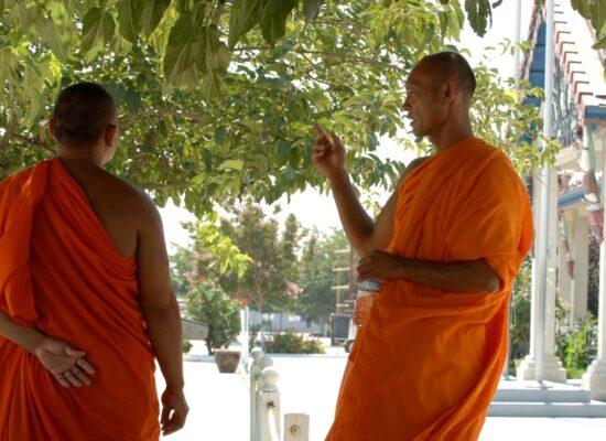 CambodianProject3520852e9ce0253ba7.JPG